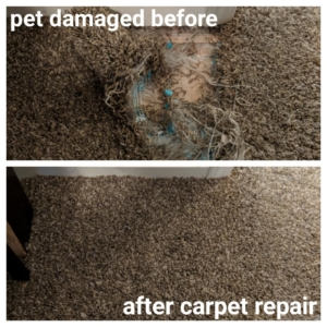 pet damaged carpet repair