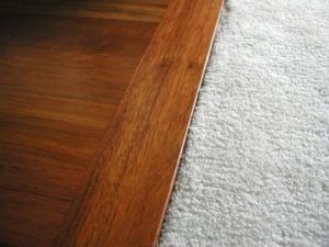 Carpet to tile/wood transitions